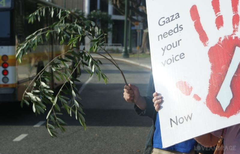 palestine7.jpg